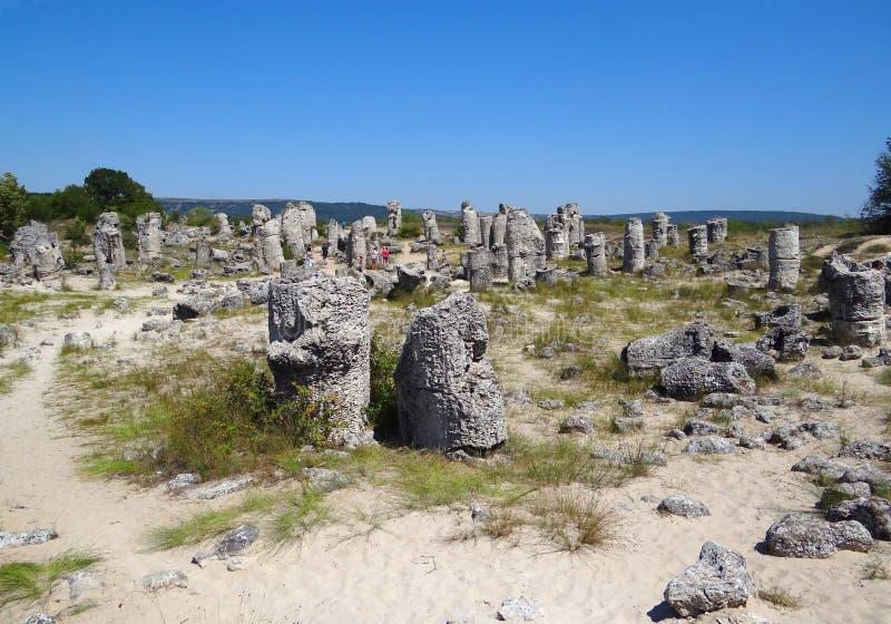 Miracle naturel de forêt en pierre images libres de droits