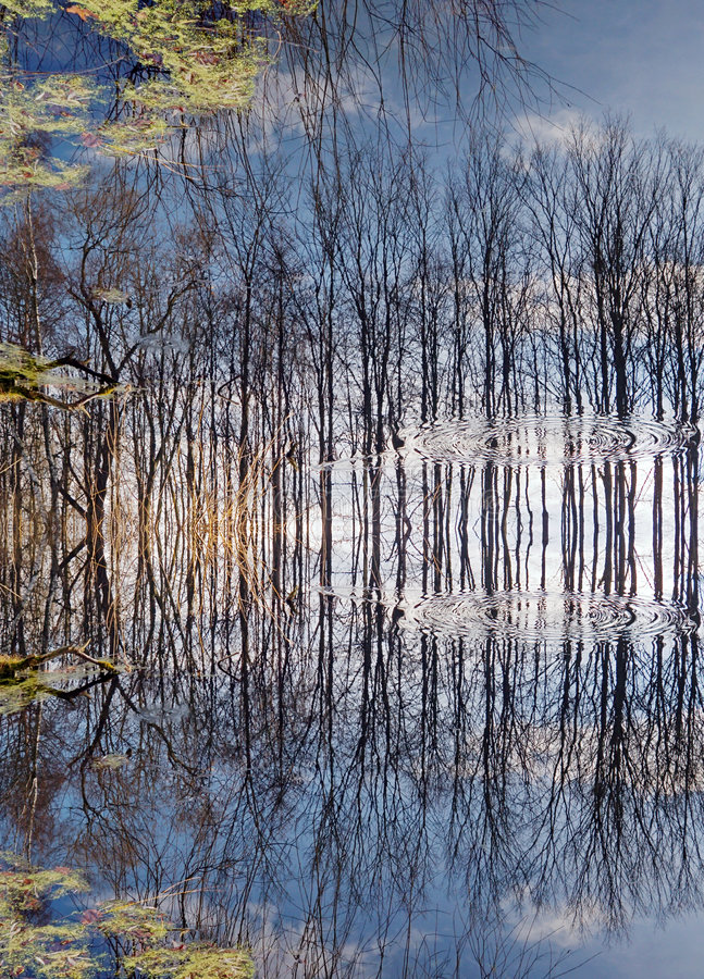 Miracle of reflection royalty free stock image