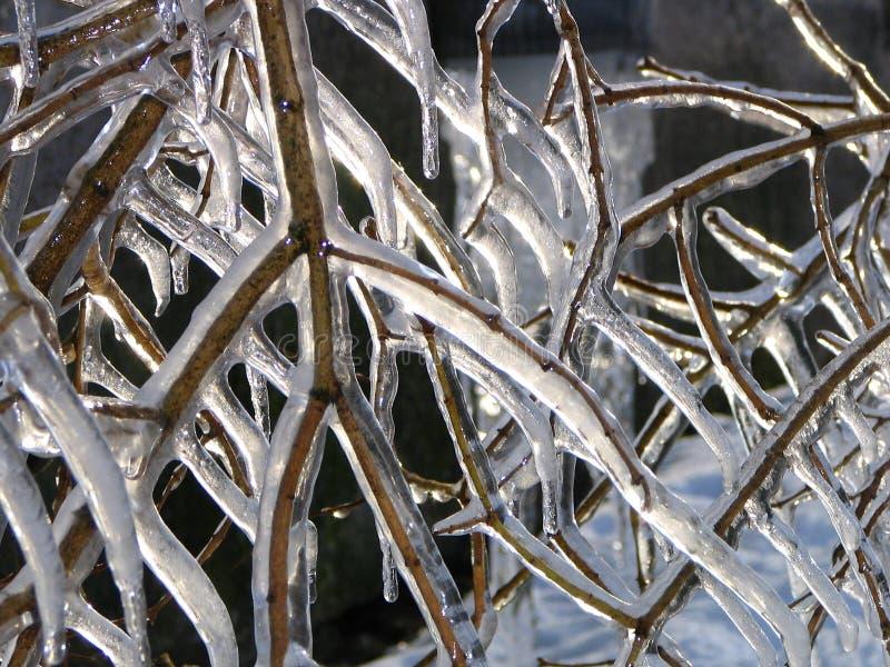 Miracles de l'hiver images stock