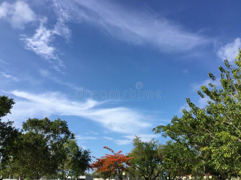 Mirada del cielo imagen de archivo libre de regalías