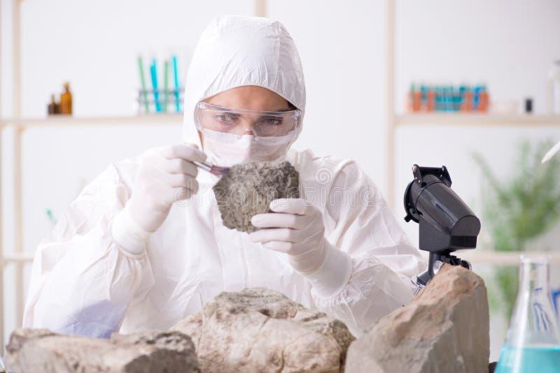 Mirada del científico y muestras de piedra en laboratorio fotografía de archivo libre de regalías