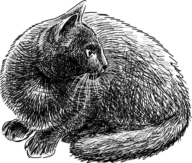 Mirada del gato ilustración del vector