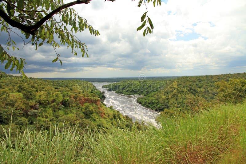 Mirada hacia fuera sobre el parque de las cataratas Murchison imagen de archivo libre de regalías
