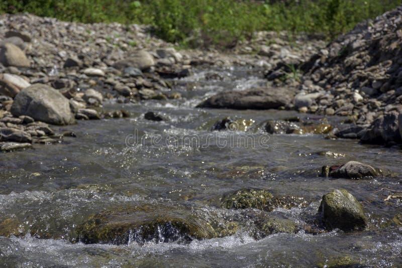 Mirada rio abajo de Kawatuna fotos de archivo