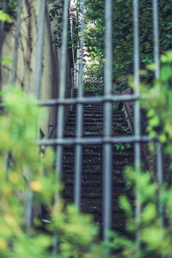 Mirada a través de un enrejado en una escalera de piedra fotografía de archivo