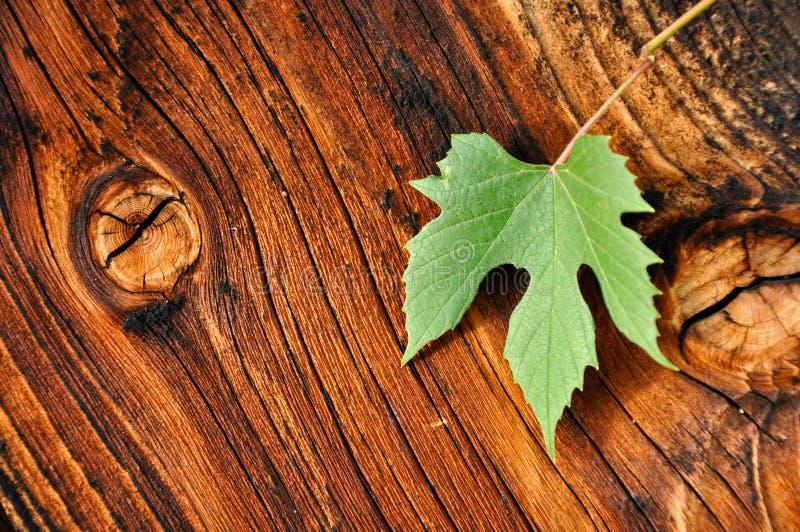 Mirador de madera con la hoja de la uva fotografía de archivo