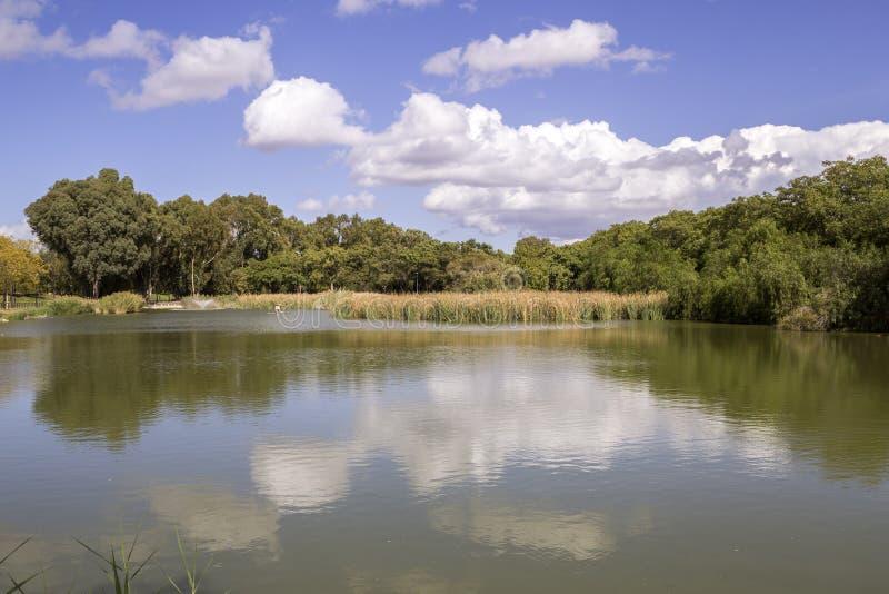 Miraflores społeczeństwa zieleni park panoramiczny, lokalizować w Seville zdjęcia royalty free