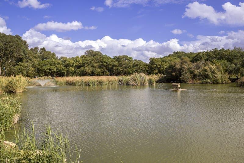 Miraflores społeczeństwa zieleni park panoramiczny, lokalizować w Seville obrazy stock