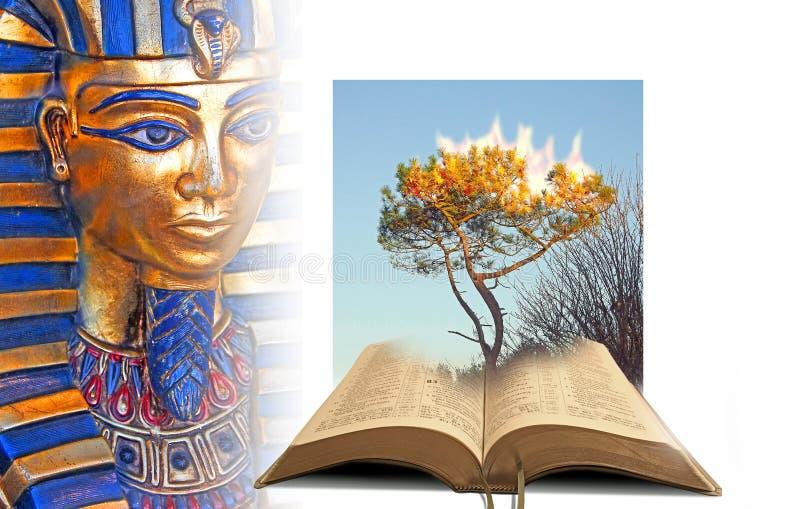 Mirakel av korsningen för Röda havet för farao för bibel för gudbränningbuske den öppna royaltyfri bild