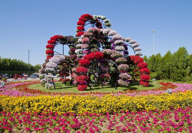 Mirakelträdgård, Dubai royaltyfria bilder