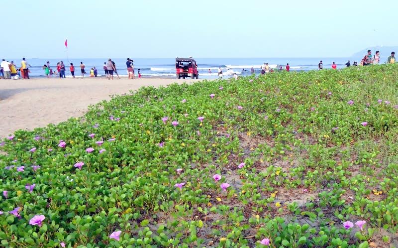 Miramar-Strand, Goa stockfotos