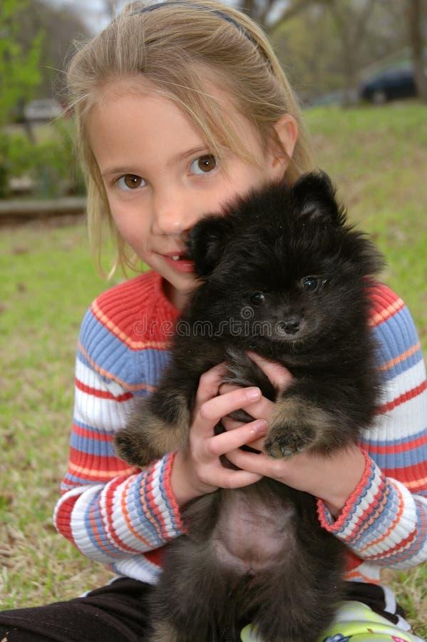 Mire mi Pomeranian fotos de archivo