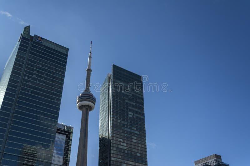 Mire para arriba en Toronto céntrico fotos de archivo libres de regalías