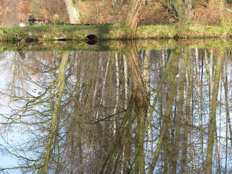 Miroir de l'eau photographie stock libre de droits