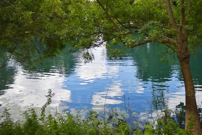Miroir de l'eau photos libres de droits