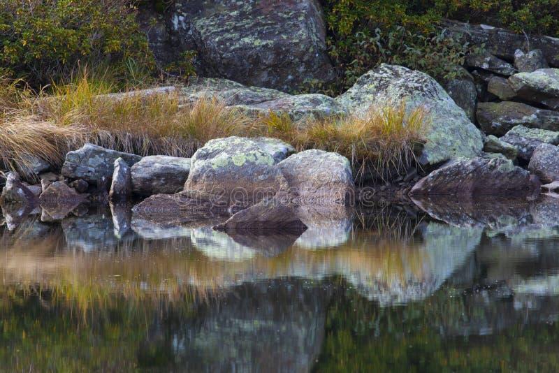 Mirron a fait de l'eau photographie stock