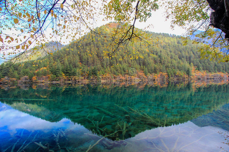 Mirror湖,九寨沟,在四川北部,中国 库存图片