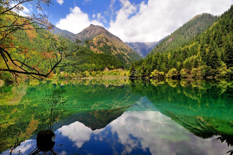 Mirror Lake, Jiuzhaigou. The Mirror Lake is one of the famous landscapes in Jiuzhaigou. Jiuzhaigou, reputed as a fairyland,located in Jiuzhaigou County of Aba royalty free stock photo