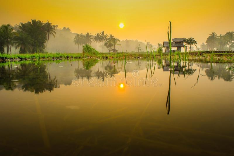 Mirror of life. Morning sunrise with reflection water on field royalty free stock photography