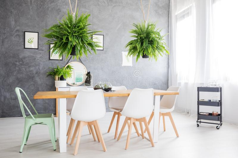 Mirror in a dining room. Mirror reflecting a green painting, hanged in a day room furnished with a dining table and cozy chairs royalty free stock photo
