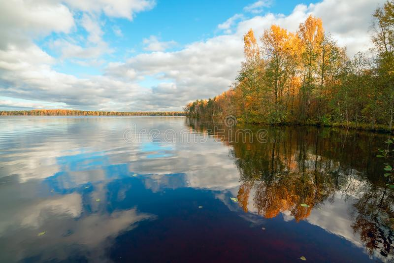 Mirror reflection of white clouds and yellow trees in clear lake in the fall. White clouds over the lake in the fall royalty free stock photography