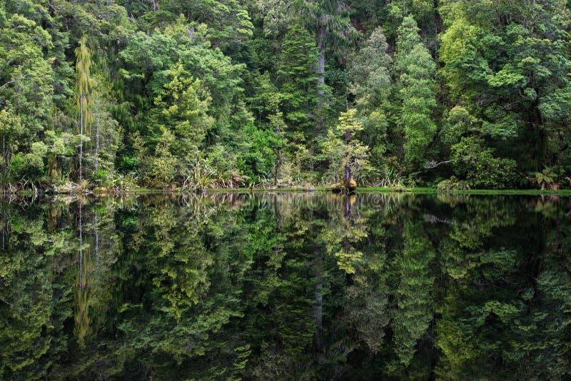 Mirror Tarn, New Zealand. Mirror Tarn, Oparara Basin, Kahurangi National Park, West Coast, New Zealand royalty free stock photography