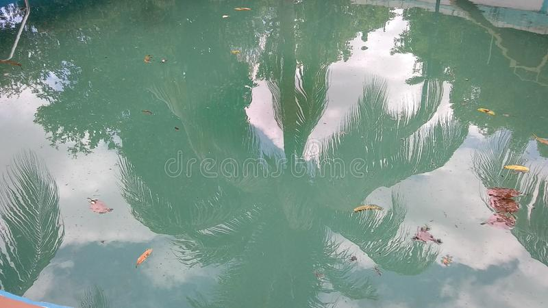 mirror water reflection stock image