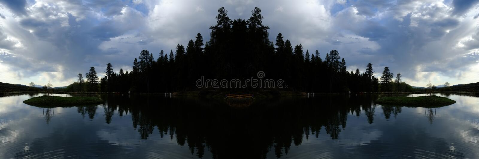 Mirrored Lake Water with Pine Trees royalty free stock photo