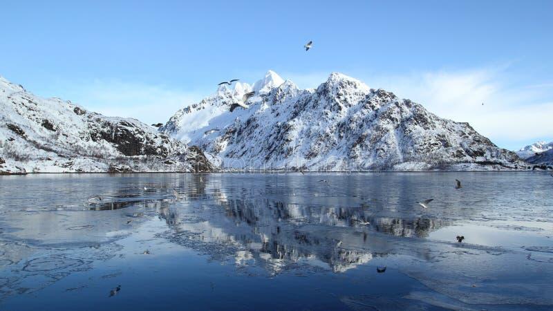 Mirrors on the frozen fjord stock photos