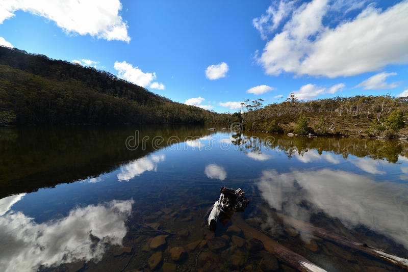 Mirrow-like reflections on Lake Dobson. At Mount Field National Park stock image