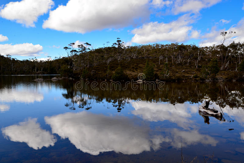 Mirrow-like reflections on Lake Dobson. At Mount Field National Park stock photos