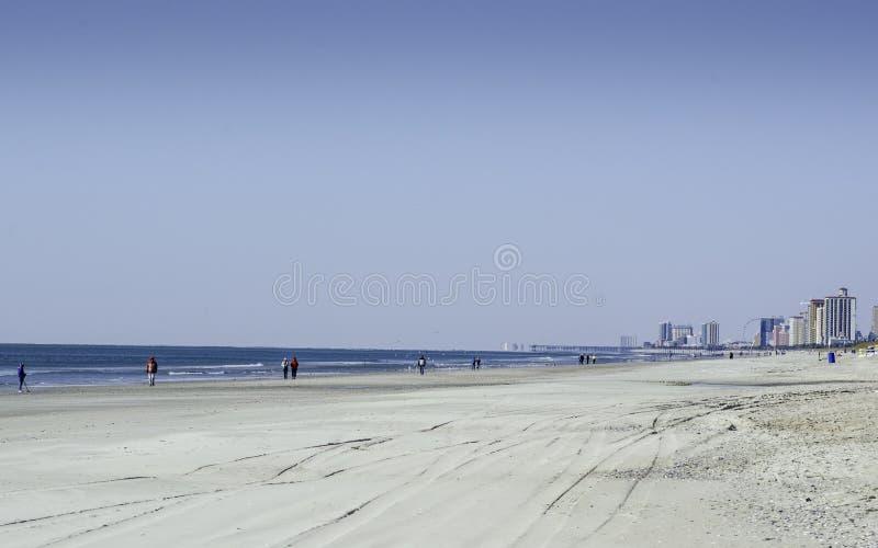 Mirt plaża W zimie fotografia stock