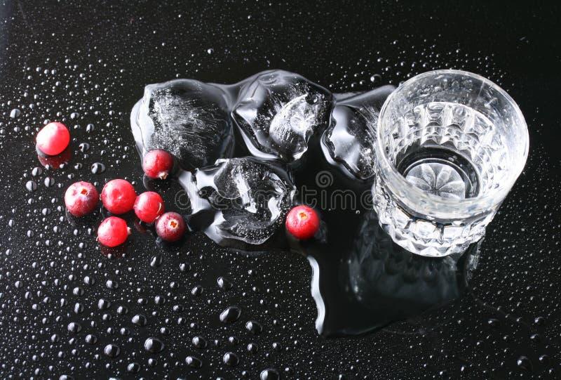 Mirtilli e vodka fotografia stock libera da diritti