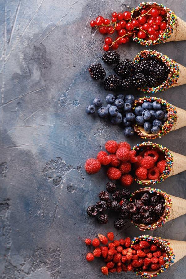 Mirtilli maturi delle bacche, lamponi, uva passa, more immagini stock
