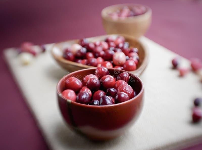Mirtilli rossi freschi per thankgiving fotografia stock