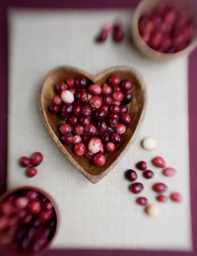 Mirtilli rossi organici sani fotografie stock libere da diritti