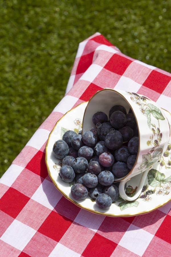 Mirtilli in una tazza ed in un piattino, su una tovaglia del percalle, con il fondo del prato inglese dell'erba fotografie stock