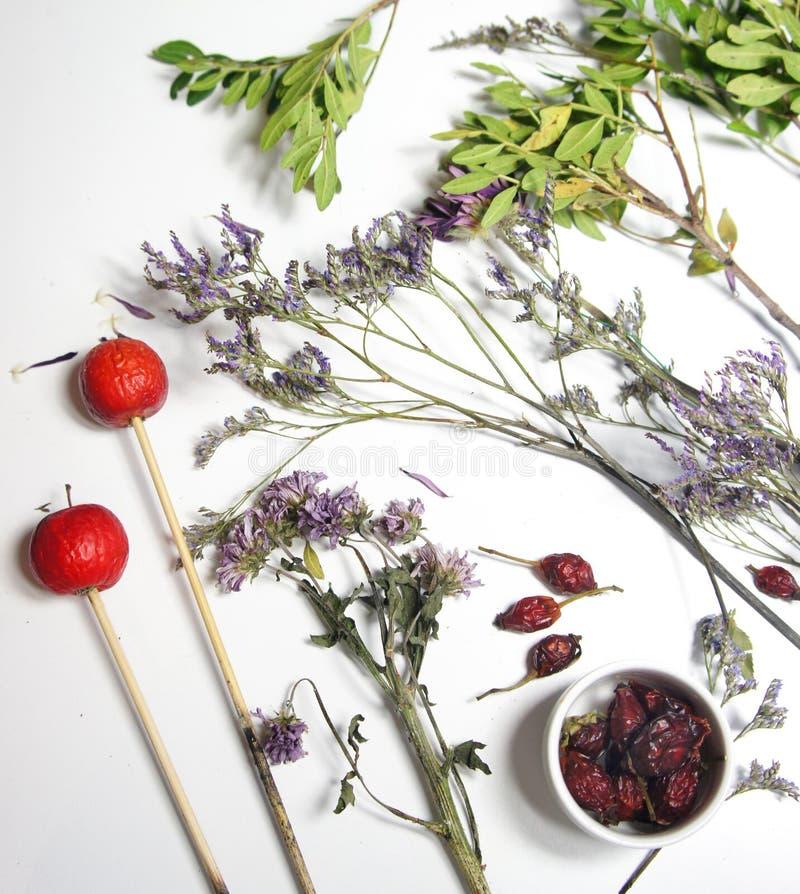 Miscela dei fiori asciutti per il ikebana fotografia stock