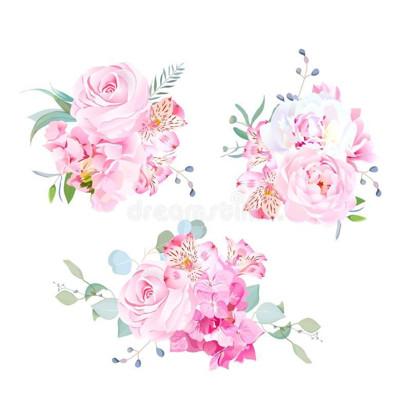 Miscela delicata dell'insieme rosa di progettazione di vettore dei mazzi illustrazione vettoriale