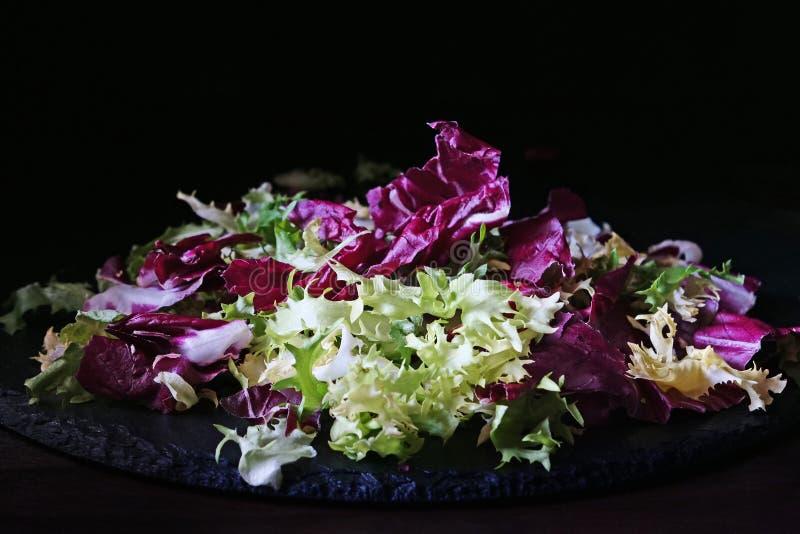 Miscela dell'insalata amaro-coperta di foglie della cicoria della foglia delle verdure, dell'indivia, del radicchio, di frisee e  immagini stock libere da diritti
