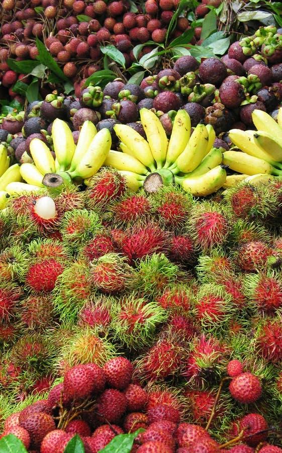 Miscela della frutta fotografie stock
