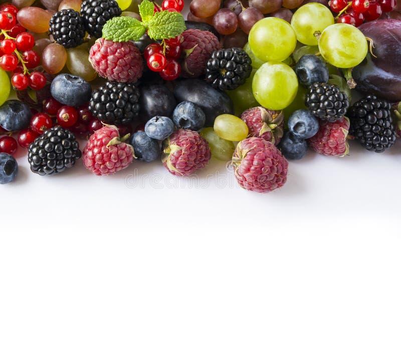 Mischen Sie Beeren und Früchte auf einem weißen Hintergrund Frische Himbeeren, rote Johannisbeeren, Brombeeren, Blaubeeren, Traub lizenzfreie stockbilder