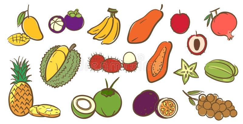 Mischen Sie Sammlung der tropischen Früchte, nettes buntes Vektor illustratio stock abbildung