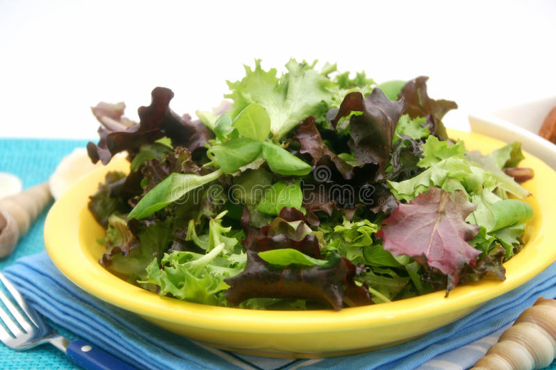 Mischsalat stockfotos