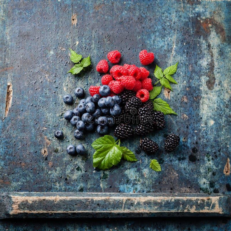 Mischung von frischen Beeren mit Blättern stockfotografie