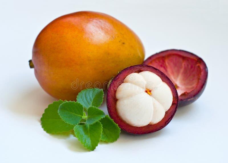 Mischung von frischen exotischen Früchten, von Mangostanfrucht, von Mango und von tadellosen Blättern stockfoto