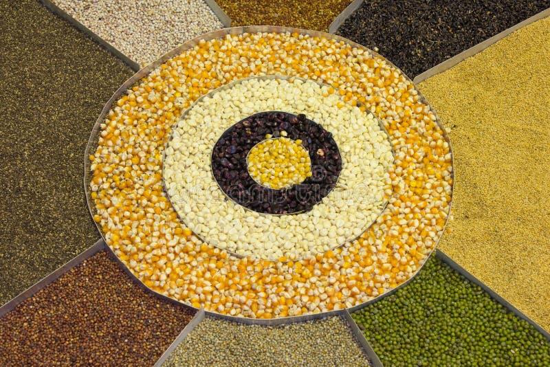 Mischung von Hülsenfruchtsammlung driedgrains, Linsen, Erbsen, soybea stockbilder