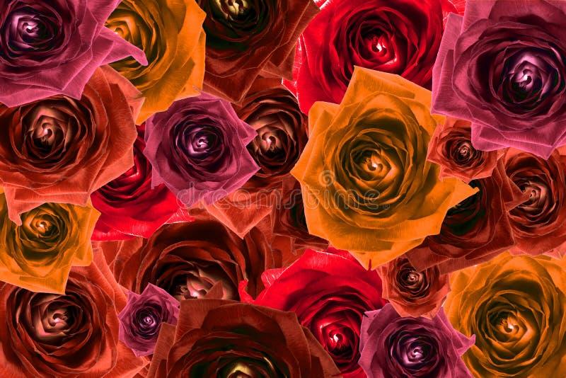 Mischungscollage des rosafarbenen Blumenhintergrundes gefiltert stock abbildung