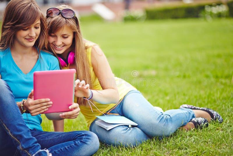 Mise en réseau de filles images libres de droits