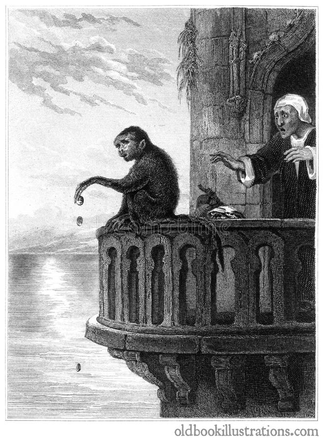 The Miser and the Monkey royalty free stock photography